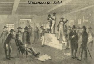 mulattoes