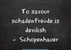 schadenfreude-devilish-via-the-quote-factory