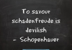 schadenfreude-devilish-via-the-quote-factory