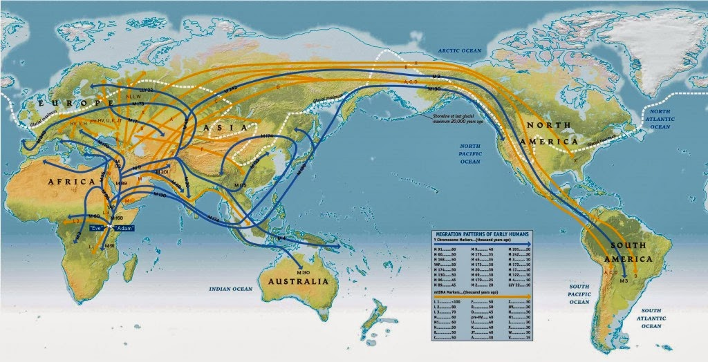 the journey of man a genetic odyssey
